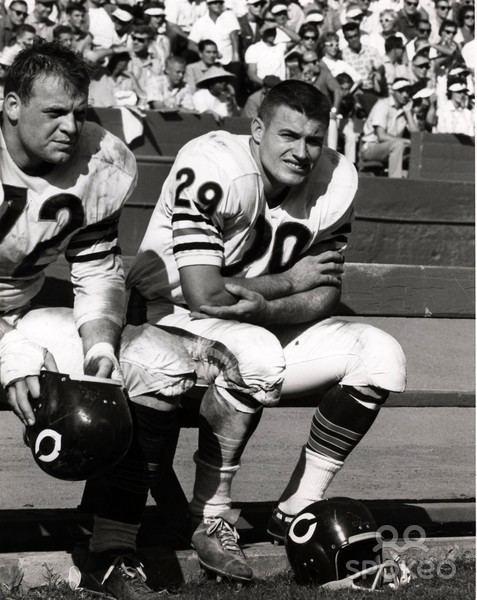 Ronnie Bull (American football) 1963 Chicago Bears Jim Cadile 72 Ronnie Bull 29 1963 Chicago