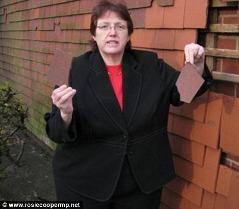 Rosie Cooper MPs39 expenses 29p crisps 40p doughnut and 45p chocolate