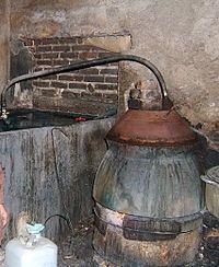 Rượu đế httpsuploadwikimediaorgwikipediacommonsthu