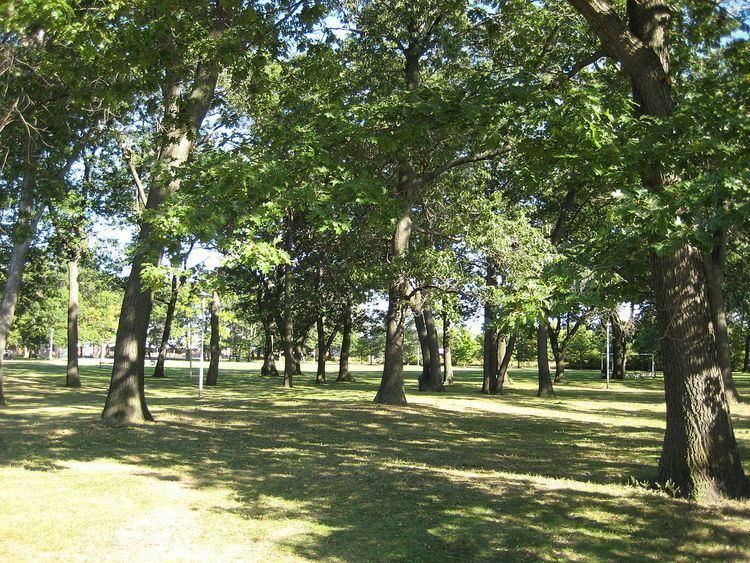 Runnymede Park