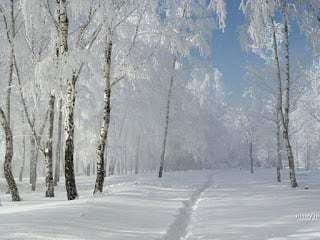 Russian Winter Russian winter and Borsch Recipe Delish Potpourri