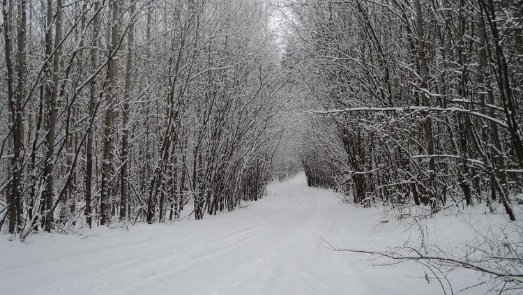 Russian Winter Russian winter by annzet on DeviantArt