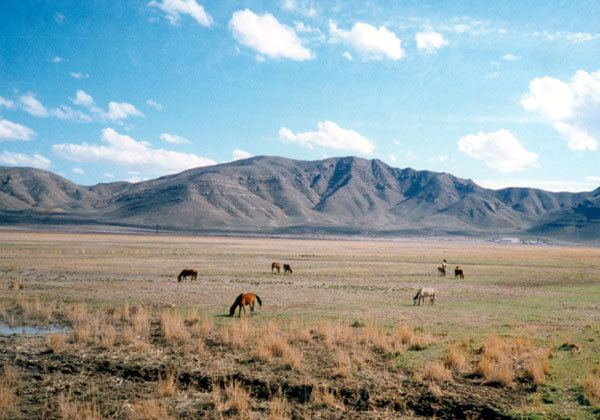 Sadarak District Beautiful Landscapes of Sadarak District