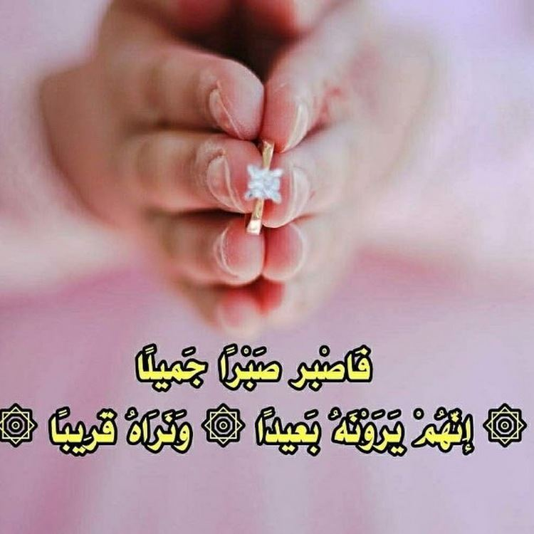 Saib Shawkat SAIB SHAWKAT YouTube