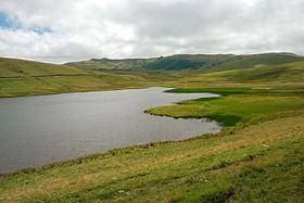 Saint-Alyre-ès-Montagne httpsuploadwikimediaorgwikipediacommonsthu