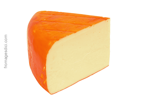 Saint-Paulin cheese StPaulin Fritz All You Need is Cheese