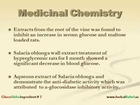 Salacia oblonga Salacia Oblonga and Diabetes YouTube
