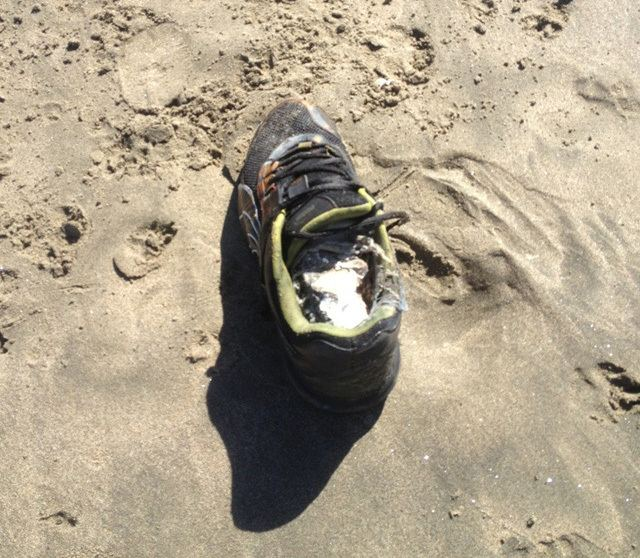 Salish Sea human foot discoveries Real World Horror A Plague of Disembodied Feet Horror Film Central