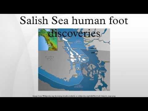 Salish Sea human foot discoveries Salish Sea human foot discoveries YouTube