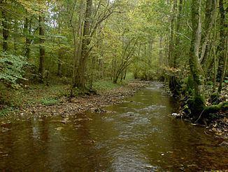 Sall (river) httpsuploadwikimediaorgwikipediacommonsthu