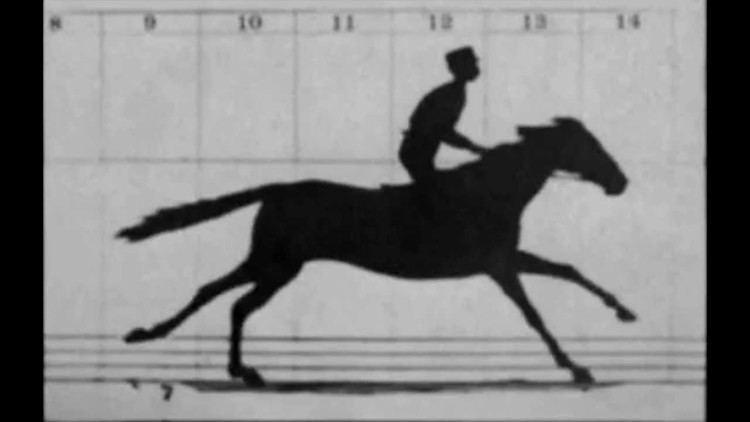 Sallie Gardner at a Gallop Sallie Gardner at a Gallop 1878 Worlds 1st Motion Picture