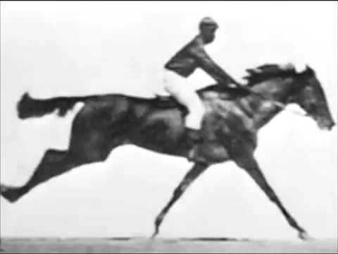 Sallie Gardner at a Gallop 1878 Sallie Gardner at a Gallop YouTube
