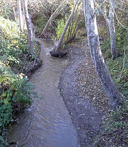 Salmon Creek (Sonoma County, California) httpsuploadwikimediaorgwikipediacommonsthu