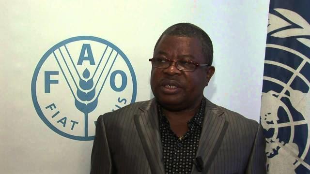 Sam Sesay Dr Sam Sesay Political Career in limbo Sierra Leone Puplic Opinion