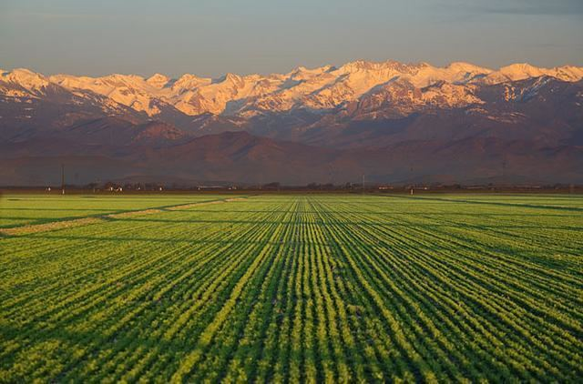 San Joaquin Valley httpssmediacacheak0pinimgcomoriginals2d