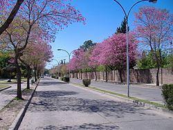 San Lorenzo, Santa Fe httpsuploadwikimediaorgwikipediacommonsthu