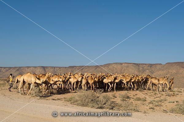 Sanaag Beautiful Landscapes of Sanaag