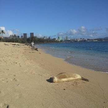 Sand Island (Hawaii) httpss3media1flyelpcdncombphotoA0gRbSuU3
