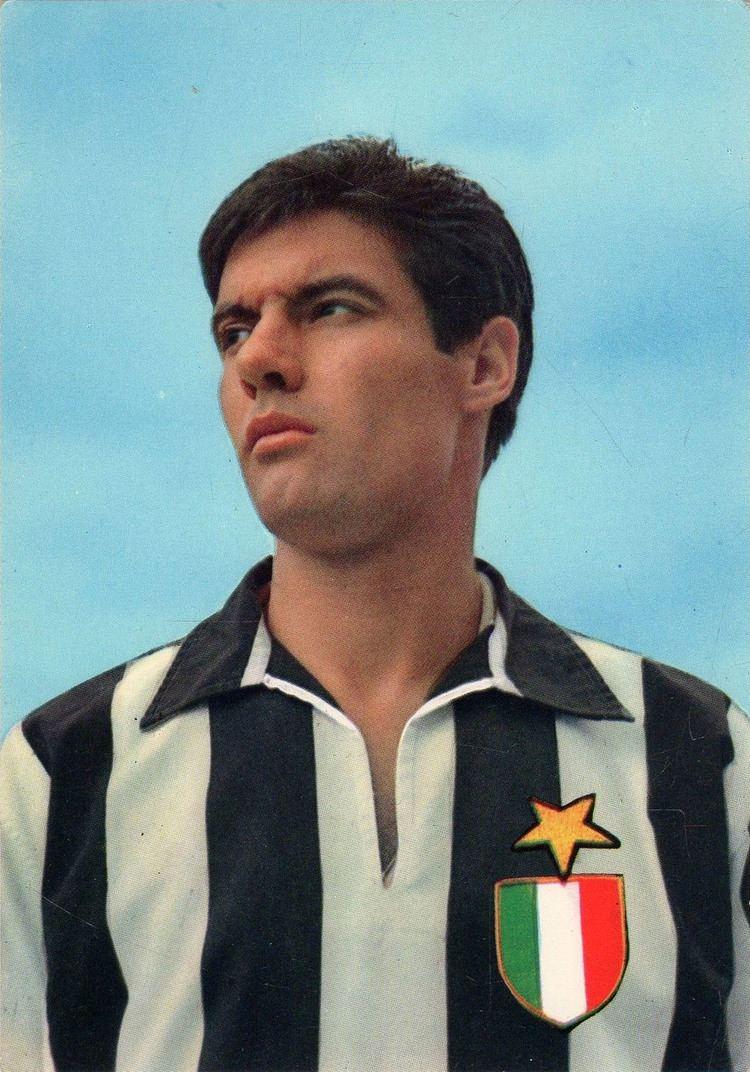 Sandro Salvadore httpsuploadwikimediaorgwikipediaiteedSan