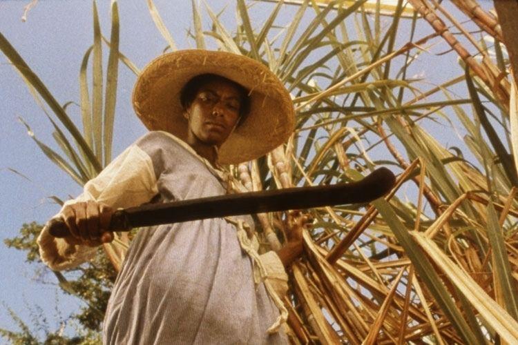Sankofa (film) Haile Gerimas Sankofa Revisited LA Rebellion Film Series