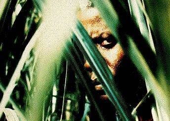 Sankofa (film) Sankofa