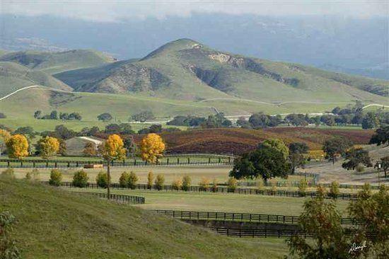 Santa Ynez, California httpsmediacdntripadvisorcommediaphotos01