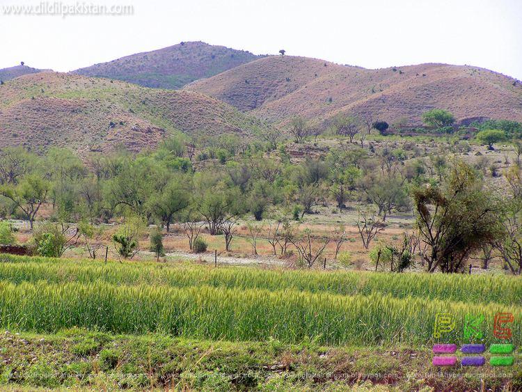 Sargodha Beautiful Landscapes of Sargodha