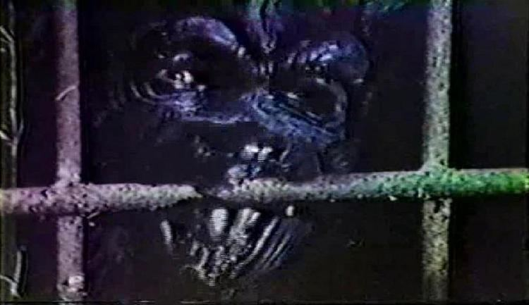 Screams of a Winter Night The Bloody Pit of Horror Screams of a Winter Night 1979
