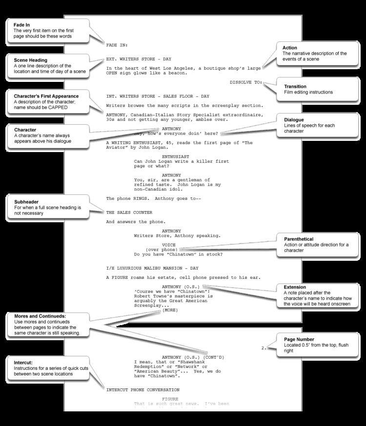 Screenplay How to Write a Screenplay Script Writing Example amp Screenwriting Tips