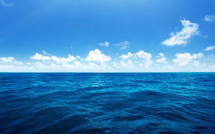 Sea Sea Facts NewsReadin