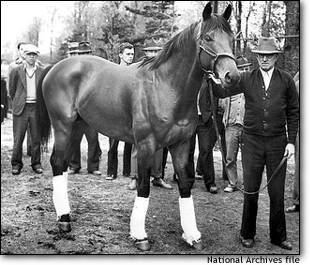 Seabiscuit Seabiscuit An American legend