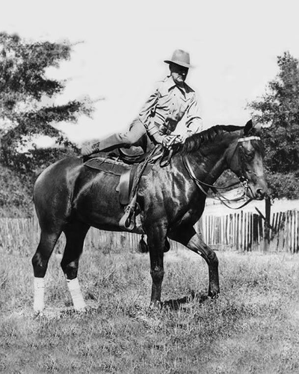 Seabiscuit Seabiscuit THE REST OF THE STORY