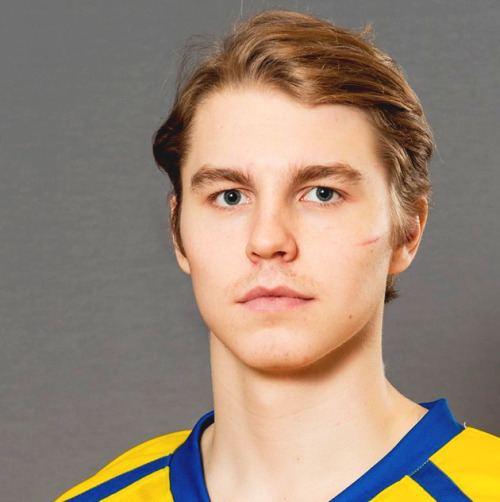 Sebastian Aho (ice hockey, born 1996) 68mediatumblrcomdac5306a8ce2f2b0ef93573c59e397