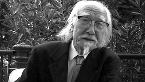 Seijun Suzuki Midnight Eye interview Seijun Suzuki