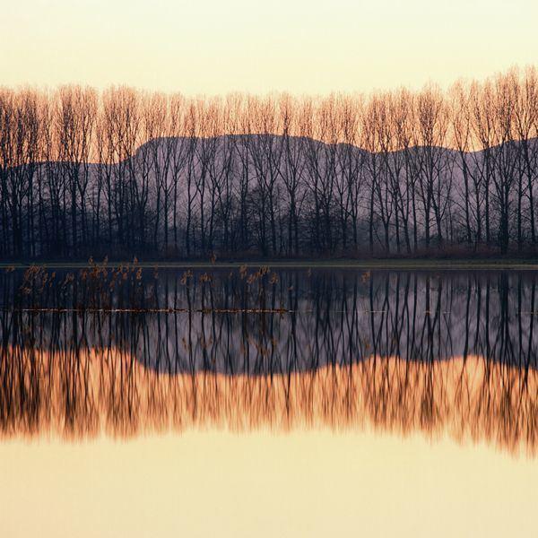 Selestat Beautiful Landscapes of Selestat