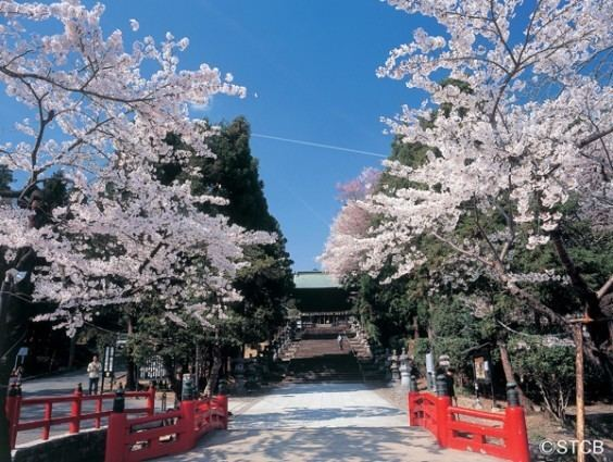 Sendai Culture of Sendai