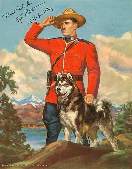 Sergeant Preston of the Yukon (TV series) Yukon King Sergeant Preston39s quotWonder DogquotSergeant Preston of the