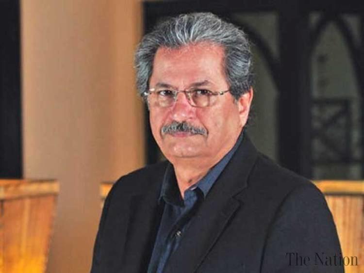Shafqat Mahmood N behind low campaign of Ayesha Gulalai Shafqat Mahmood