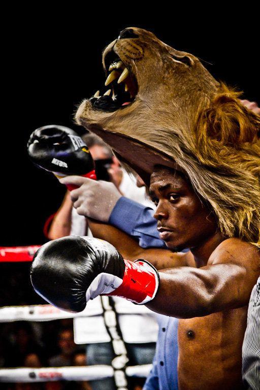 Sharif Bogere The Lion39 roars back Interview with Sharif Bogere