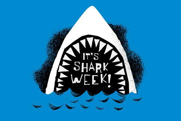 Shark Week Dear Shark Week I Cheated on you with SharkFest MixShine