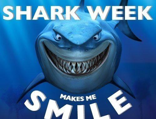Shark Week The Allure of Shark Week