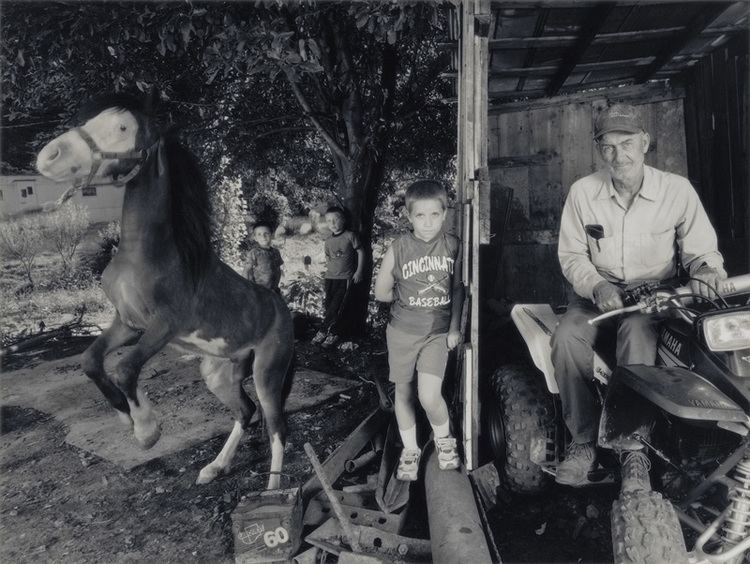 Shelby Lee Adams Shelby Lee Adams Shithead the Pony with Noble Family