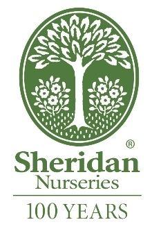Sheridan Nurseries httpsuploadwikimediaorgwikipediaenfffShe
