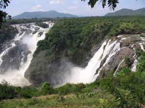 Shimsha Shimsha Falls Karnataka