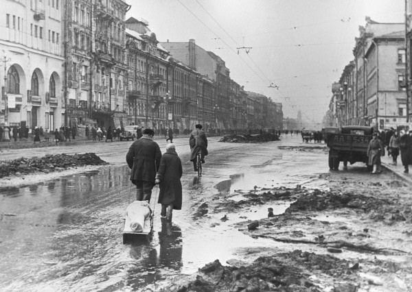 Siege of Leningrad httpsuploadwikimediaorgwikipediacommonsee