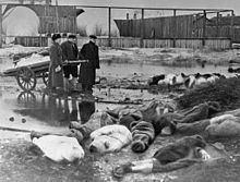 Siege of Leningrad Siege of Leningrad Wikipedia