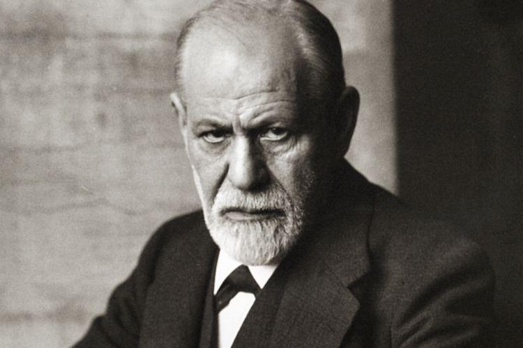 Sigmund Freud Karel Donk39s Blog Carl Jung on Sigmund Freud39s Sexual