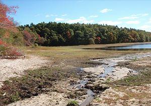 Silver Lake (Plymouth County, Massachusetts) httpsstatic1squarespacecomstatic546d61b5e4b