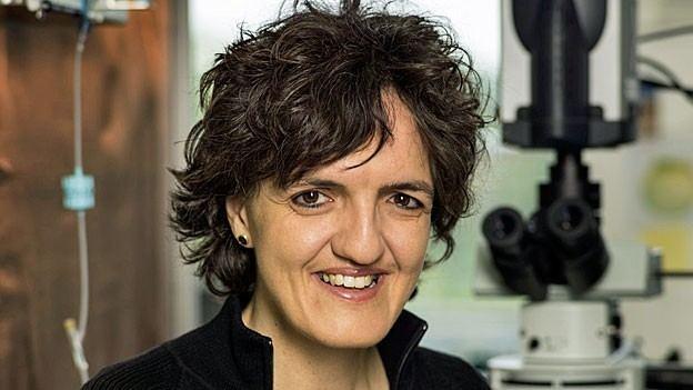 Silvia Arber Silvia Arber Es gibt nur wenige HeurekaMomente Tagesgesprch SRF