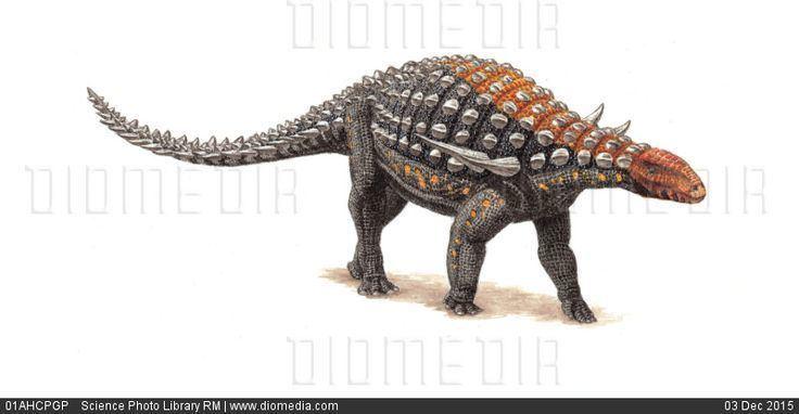 Silvisaurus Silvisaurus condrayi dinosaur artwork stock photo Armored